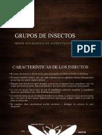 GRUPOS DE INSECTOS SEGÚN SUS HABITOS DE ALIMENTACIÓN