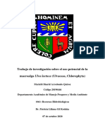 Trabajo de investigación sobre el uso potencial de la macroalga Ulva lactuca