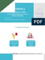 ACTIVIDAD 1 EXPLORACION DEL ENTORNO NATURAL (1).pptx