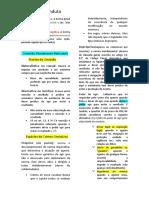 Formas de conduta - Crimes omissivos e comissivos.docx