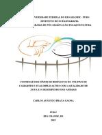 Tese_Carlos_Gaona_2015.pdf