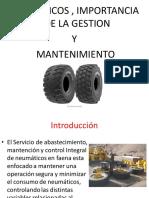 4.1 Neumaticos.pdf