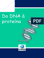 Do DNA à Proteína