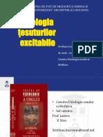 tesut_exitabil_2020-16957.pptx