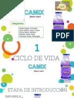 INTRO - CAMIX