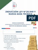 INDUCCIÓN LEY N°20.949 Y NVA GUÍA TÉCNICA - UNIDAD ERGONOMÍA 2019 DPR