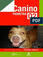 Canino_Piometra_Imprimir