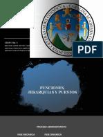 Presentacion Funciones, Jerarquias y Puestos.pptx