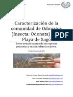 Caracterización de la comunidad de Odonatos de Xagó (protegido)