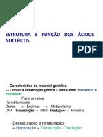 A5_ESTRUTURA E METABOLISMO DOS ÁCIDOS NUCLÉICOS
