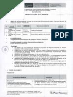 tdr-Proceso-CAS-020.pdf