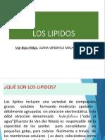 Los Lipidos.pptx