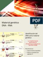 4. Material genético (1)