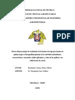 Hernández Cotrina, Mario - proyecto de tesis (3)