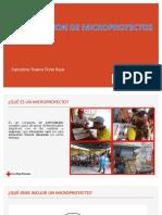 FORMULACION DE MICROPROYECTOS.pdf