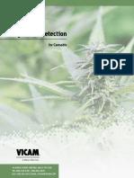 Cannabis-Vicam
