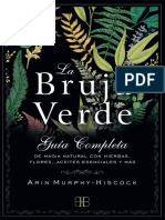 La bruja verde  - Arin Murphy - Hiscock