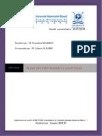 audit_des_performances_logistiques.pdf