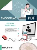 Sistema  ENDOCRINO fisiopatologia
