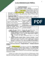 Aula 3 - Estrutura da Administração Pública - Parte 1 (1º Setor).docx