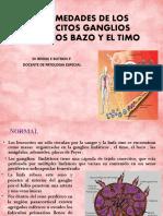 tema 6 enfermedades de los leucocitos.pptx