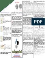 Instrucciones Fertile-Focus