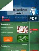 Protozoários e Protozooses envio.pptx
