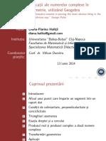 aplic nr complexe in geom.pdf