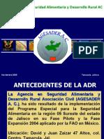 AGESADER 2008 Resultados_PESA_Sureste