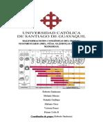 MALFORMACIONES CONGÉNITAS DEL SISTEMA TEGUMENTARIO.docx