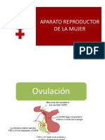 04.Aparato Reproductor Femenino.pdf