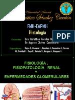 Fisiologia ,Fisiopatologia Renal y Enfermedades Glomerulares Diapositivas