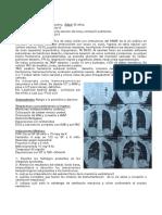 Caso clínco 1 cuatrilmestre - Introduccion - 2020 (1)