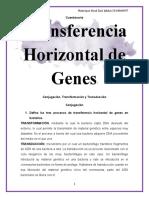2. Cuestionario Transferencia Horizontal de Genes^J DEF