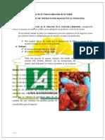INVESTIGACIÓN DE OPERACIONES EN LA INDUSTRIA (1) (1)
