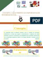 CONCEPTO, CARACTERÍSTICAS E IMPORTANCIA DE SEGURIDAD
