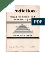 Alexander Marr - PREDICTION I.pdf