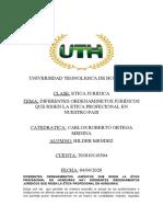DIFERENTES ORDENAMINETOS JURIDICOS QUE RIGEN LA ETICA PROFECIONAL EN NUESTRO PAIS