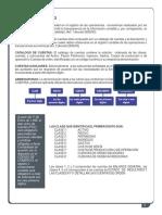 III plan unico de cuentas.pdf