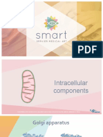 Intracellular_components.ppt
