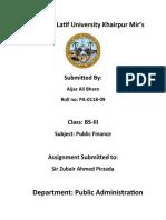 Assignment Public Finance