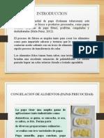 111 CONGELACION DE ALIMENTOS (PAPAS PRECOCIDAS)