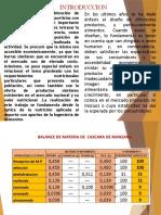 BARRITAS ENERGETICAS CON DESIDRATADO DE CASCARA DE MANZANA P.pptx