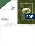 Ervas ebook Cigana Vida uso