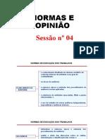 NORMAS E OPINIÃO