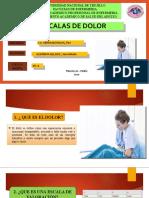 ESCALAS DE VALORACIÓN DEL DOLOR