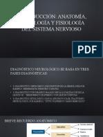UNIDAD 2 Introducción anatomia fisiologia y semiologia neurologica.pptx