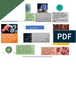 mAPA MENTAL DEL Sistema inmune resumen