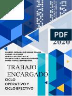CICLO OPERATIVO Y EFECTIVO.docx