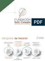 v1 PRESENTACION  2020 fsc.pdf
